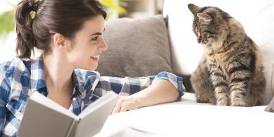 5 Tips for Pet Owners on Maintaining a Clean Home , Lincoln, Nebraska