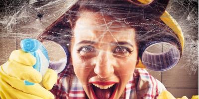 How to Remove & Prevent Cobwebs in the Home, Lincoln, Nebraska