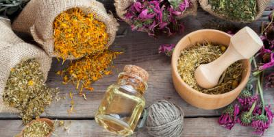 4 Amazing Herbs to Promote Holistic Birthing & Pregnancy, Suffern, New York
