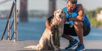 FAQ About Pet Insurance Answered, Crandon, Wisconsin