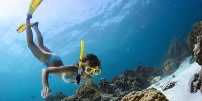 Top 5 Activities to Try in Hanauma Bay, Honolulu, Hawaii