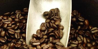 What Makes Kona Coffee a Hawaii Gem?, Honolulu, Hawaii