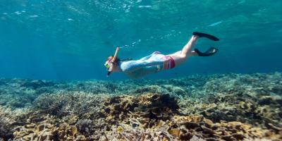 The Do's & Don'ts of Snorkel Tour Etiquette, Honolulu, Hawaii