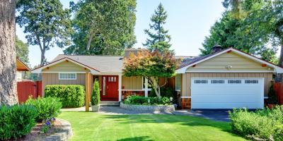 5 Tips for Landscaping After Tree Removal, Honolulu, Hawaii
