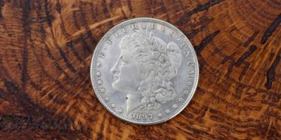 4 Common Questions About Morgan Dollars, Honolulu, Hawaii