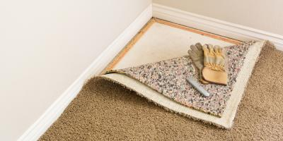 What Causes Carpet Mold? Honolulu's Carpet Cleaning Professionals Explain, Koolaupoko, Hawaii