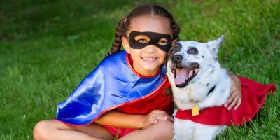 Honolulu Veterinarians Offer 5 Essential Halloween Pet Safety Tips, Honolulu, Hawaii