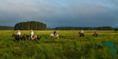 America's First Cowboys: The Florida Crackers, Brooksville, Florida