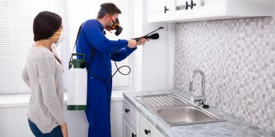 How to Combat Ants in the Kitchen, Houston, Texas