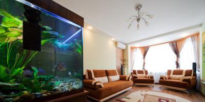 How Should You Move an Aquarium?, Cincinnati, Ohio