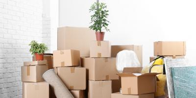 How to Safely Transport Plants When You Move, Ewa, Hawaii