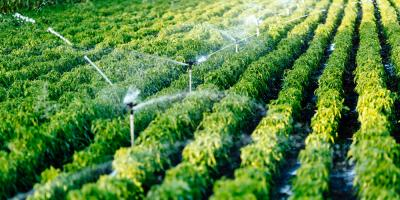 How Your Home or Business Can Benefit From an Irrigation Well, Flathead Reservation, Montana