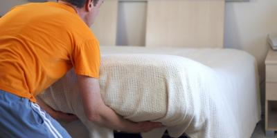 5 Places in Your Home You'll Find Bedbugs, Linden, Texas