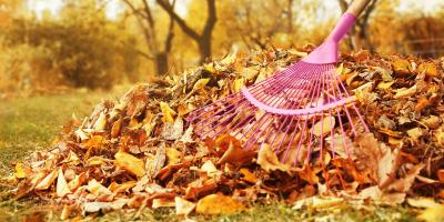 3 HVAC Services That Can Keep Fall Allergies at Bay, North Canton, Ohio