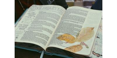 Insight on Christian Living: Understanding Grace & Faith, Fairbanks, Alaska