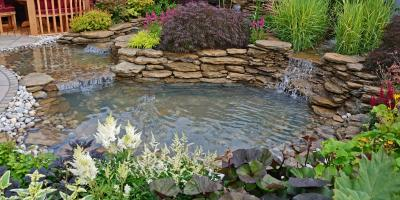 What to Consider When Adding a Pond, Rainy Lake, Minnesota