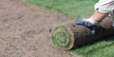 How Much Water Does New Sod Need?, Dimmitt, Texas