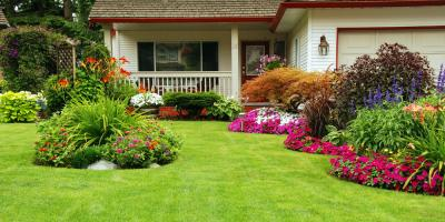3 Early Spring Lawn Watering Tips, Waterford, Connecticut