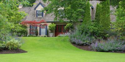 Which Turfgrass Is Best for My Lawn? Irrigation Experts Weigh in, Chalco, Nebraska