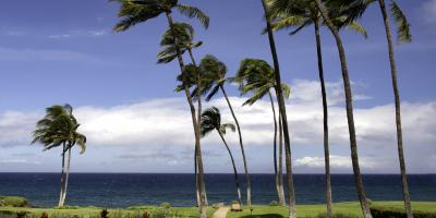 Financial Plan Services: 5 Crucial Steps to Take After a Hurricane, Honolulu, Hawaii