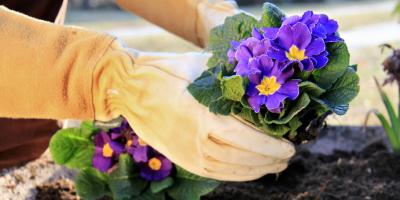Plan Your Spring Garden, Fairfield, Ohio