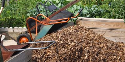 5 Types of Mulch You Should Be Familiar With, Clearwater, Minnesota