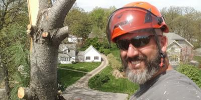 3 Dangerous Signs You Need Tree Removal, Boone, Missouri
