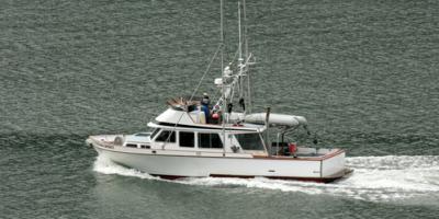 5 Fun Activities to Do in Juneau, AK, Juneau, Alaska