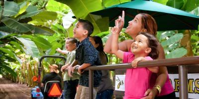 What to Expect During a Tour of Kahuku Farms , Kahuku, Hawaii