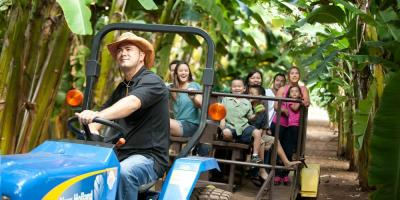 Experience Farm-to-Table Firsthand During These Fun & Exciting Farm Tours, Kahuku, Hawaii