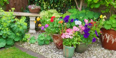 Do's & Don'ts of Landscaping with Gravel, ,