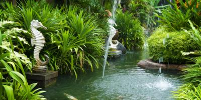 4 Reasons to Install a Fish Pond, Waimea, Hawaii