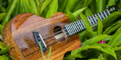 What Beginners Should Know About Restringing Their Ukuleles, Waikane, Hawaii