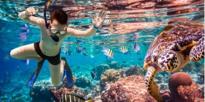 Do's & Don'ts of Taking a Snorkeling Tour, Ewa, Hawaii