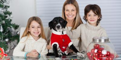 3 Pet Care Safety Tips to Remember During the Holidays, Ewa, Hawaii