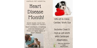 March Cardiac Month, Ewa, Hawaii