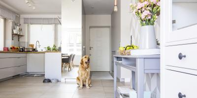 A Guide to Creating a Pet-Friendly Kitchen, Hopewell, New Jersey