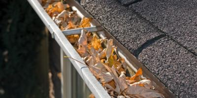 Gutter Cleaning Experts Share 3 Tips to Prevent Leaf Debris Collection, Frankfort, Kentucky