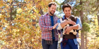 How to Hire a Reputable Adoption Lawyer, LaFayette, Georgia