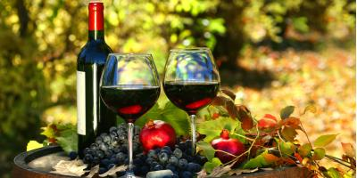 A Beginner's Guide to Red Wine, Lakeville, Minnesota