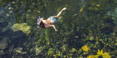 3 Tips for Safe & Courteous Snorkeling, Lahaina, Hawaii