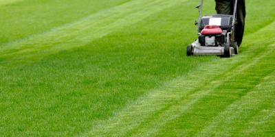 How to Choose Between Electric or Gas-Powered Lawn & Garden Equipment, Lancaster, Wisconsin