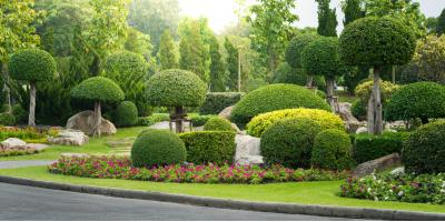 3 Reasons You Need Landscape Services This Fall, Batavia, New York