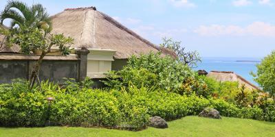 3 Common Landscape Maintenance Mistakes, Koolaupoko, Hawaii