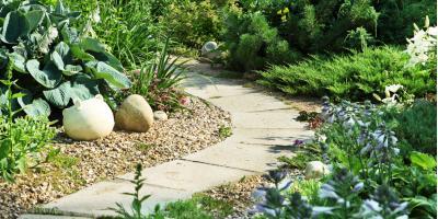 3 Benefits of Professional Landscape Maintenance, Ewa, Hawaii