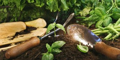 6 Quick & Easy Things You Can Do in Winter to Prepare for a Spring Garden, Ludlow, Kentucky