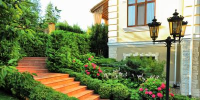 Should You Update Your Landscape Design? 3 Indicators That Say Yes, Northeast Travis, Texas