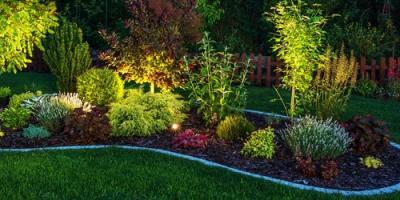 Landscape Design Company Shares 5 Plants That Grow Well in Kentucky, Richmond, Kentucky