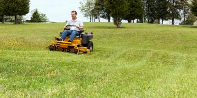 How to Determine When a Lawn Needs Grub Control, Sagamore Hills, Ohio