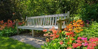 The Dos & Don'ts of Garden Design to Create a Backyard Oasis, Honolulu, Hawaii